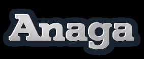 ANAGA vėdinimo ir kondicionavimo sistemos