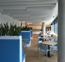 SWED-BANK įrengimas, Savanorių g. 5, Vilnius